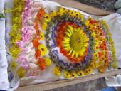 mandala bylinková - dúhová