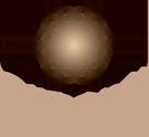 Logo ORGONIT
